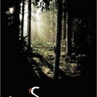 Review: The Survivors by Amanda Havard