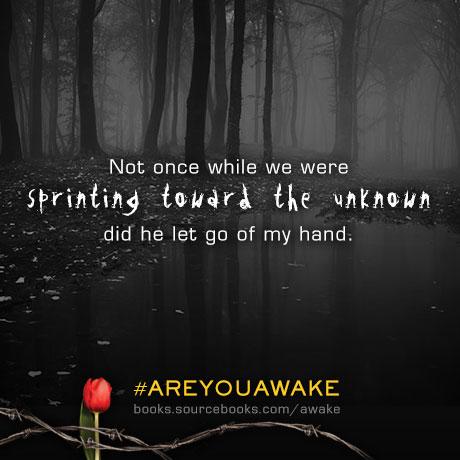 AwakeGraphic1