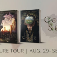 Spotlight Tour: The Collectors' Society by Heather Lyons (Excerpt)